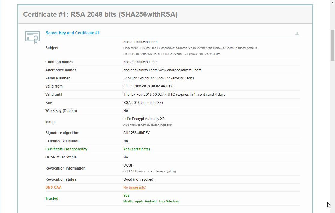 「SSL Server Test」実行結果(1)